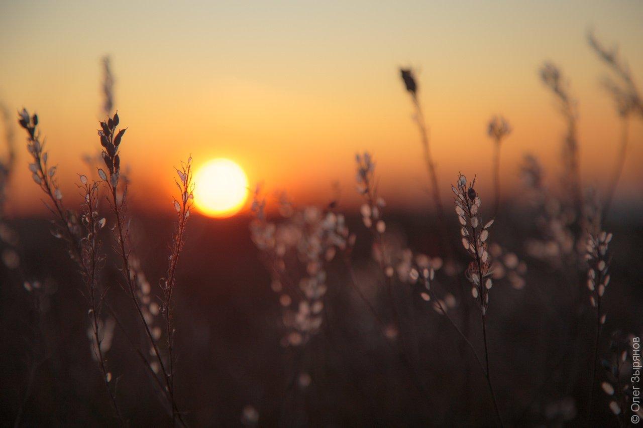 Пейзажи Кронштадта: поздняя осень
