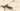 Маршрут экскурсии Форт Северный №4 Зверев